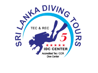 Sri Lanka Diving Tours
